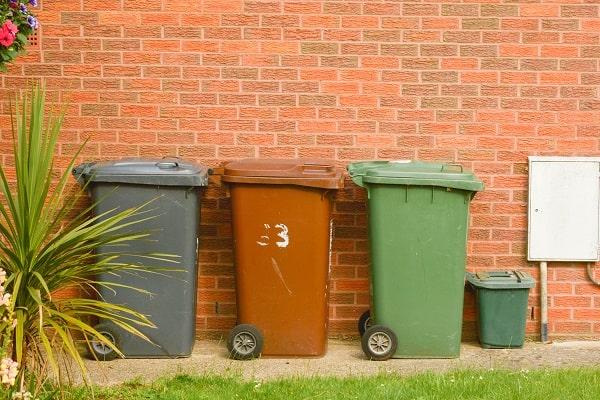 Local council - waste management service